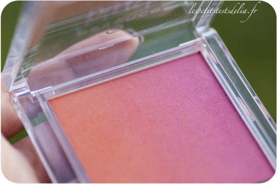 blush up 10 heat wave de Essence