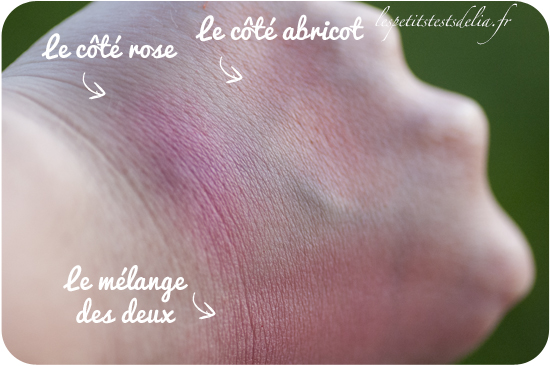 swatch du blush up 10 heat wave de Essence